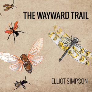 TheWaywardTrailCover